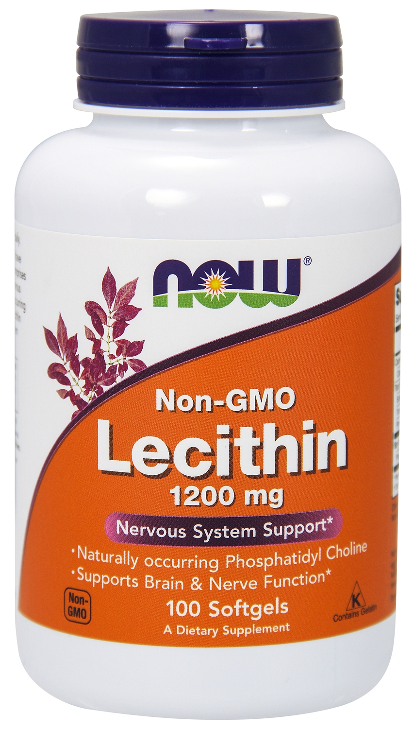 Lecithin 1200 mg 100 sgels by NOW Foods