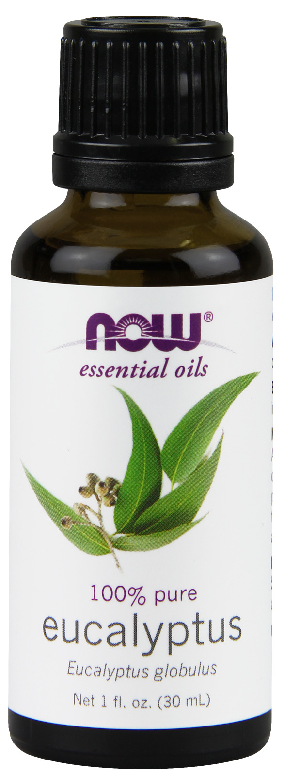 Eucalyptus Oil 1 fl oz (30 ml) by NOW