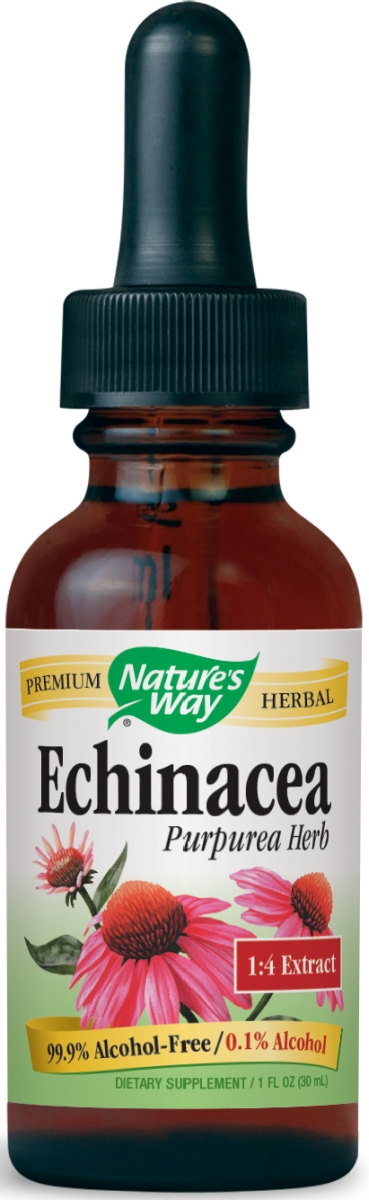 Echinacea Alcohol Free 1 fl oz (30 ml) by Nature's Way