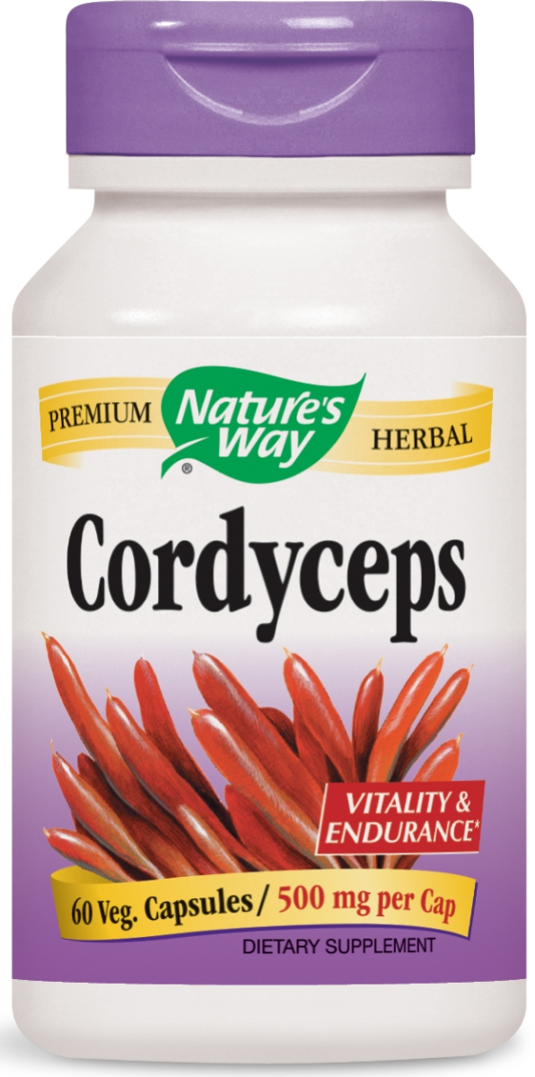 Cordyceps Standardized Extract 60 Vcaps by Nature's Way