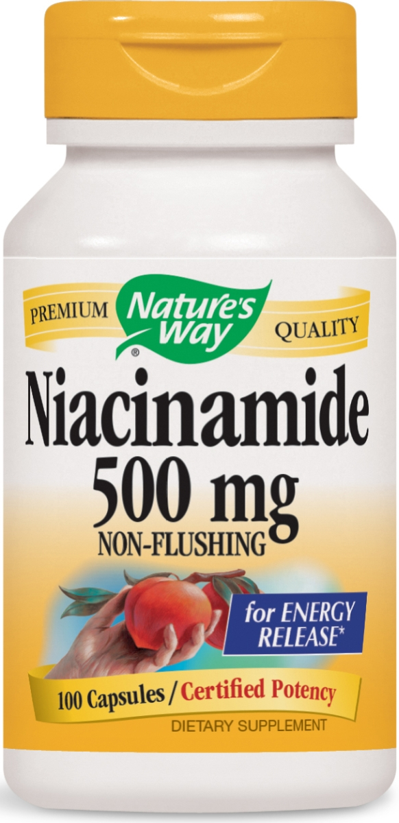 Niacinamide 500 mg 100 caps by Nature's Way
